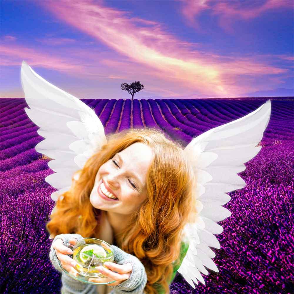 jak si přát s anděly